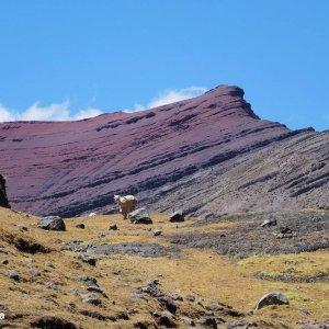 Montagne rouge - Ausangate