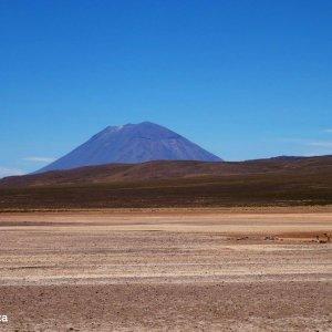 El misti vu depuis la route pour le Colca