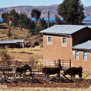 trek titicaca
