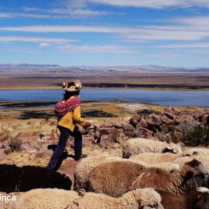 Trek au Titicaca