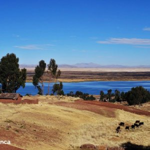 trek titicaca lake