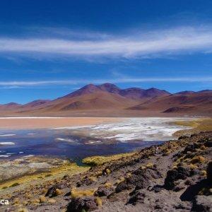 Laguna Colorada - Voyage Bolivie