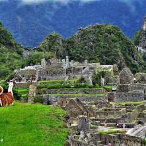 Machu-Picchu-Lama-Trek-au-Pérou