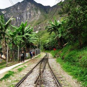 Trek du Salkantay - Direction Machu Picchu