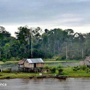 voyage-au-pérou-amazonie