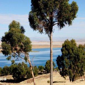 Trek Lac Titicaca