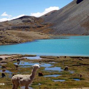 Lagune à l'Ausangate